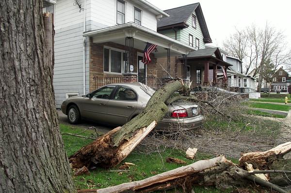 110428 wind damage16