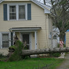 110428 wind damage10