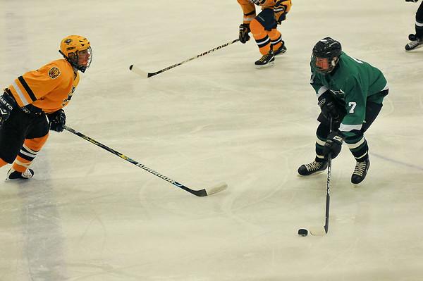 101223 L-P /L Hockey3 - Sports