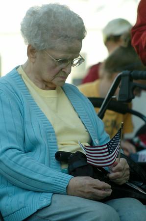 110614 flag day/vets park