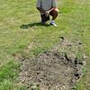 110629 Hyde Park Golf 2 - Sports