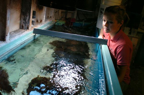 101021  Aquarium2