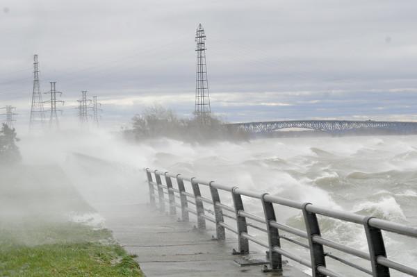 110428 wind damage11