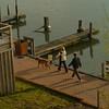 110505 dock walkers