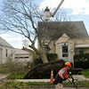 110428 wind damage/