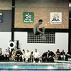 111213 NW swimming feature