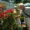 110716  Garden Walk3