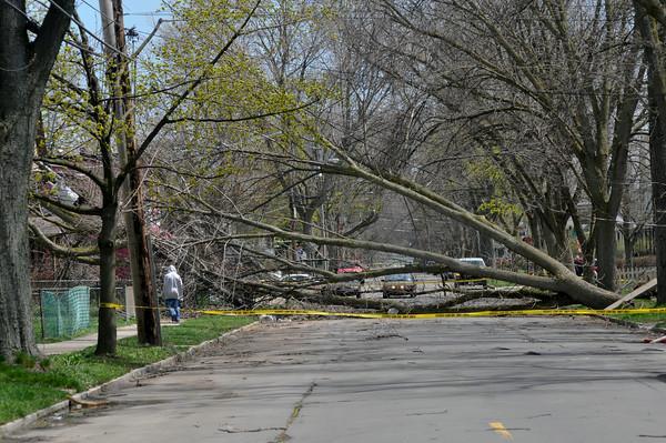 110428 wind damage9