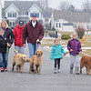 James Neiss/staff photographerWheatfield, NY - Orphaned dogs, from left, Zack, Sheeba and Chole, find a good home with the Cacciatore family, from left, Nicholas, 13, his mom Melissa, Chris, 16, their father Frank, Hailey, 5 and Hannah, 9.