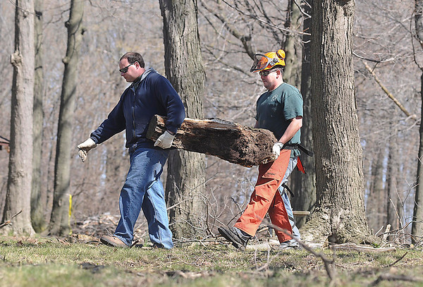 James Neiss/staff photographerNiagara Falls, NY - New York State Park workers Dan Sodano and Jesse Hachee carry cut wood out of Whirlpool State Park after trimming the trees in the picnic area of the park.