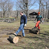 James Neiss/staff photographerNiagara Falls, NY - New York State Park workers Dan Sodano and Jesse Hachee roll freshly cut logs for pickup at Whirlpool State Park after trimming the trees in the picnic area of the park.