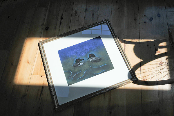 """James Neiss/staff photographerTown of Niagara, NY -  An illustration titled """"Loons"""" in the children's book """"A Night In The Woods,"""" authored by sisters Marna Whitworth and Joan Johnson."""