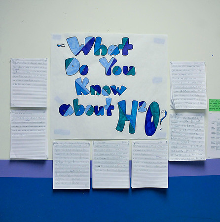 James Neiss/staff photographerTown of Niagara, NY - The hallway walls at Niagara Charter School are filled with information produced by students and faculty.
