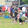 James Neiss/staff photographerNiagara Falls, NY - Pet owners lined up for a free Niagara County rabies clinic at the Hyde Park Oasis/Centennial Pavilions. Hundreds of pet owners showed up to get their animals vaccinated for free.