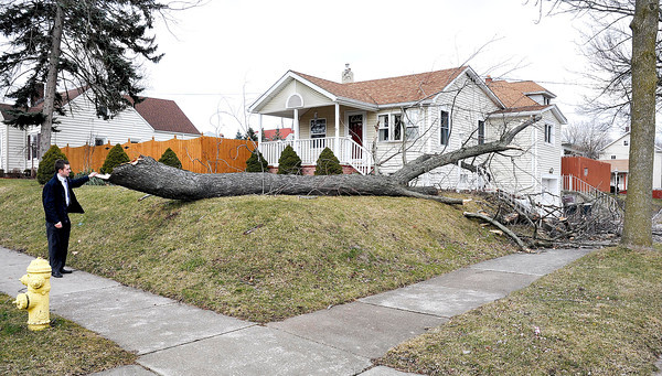 James Neiss/staff photographerNiagara Falls, NY - Robert Cushman was surprised to see this tree fallen in his neighbors yard on the corner of Deveaux Street and Maple Avenue. Saturdays wind storm caused city wide damage.