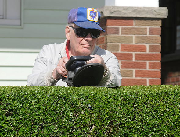 James Neiss/staff photographerNiagara Falls, NY - Precision Cut: Chuck Conti of 21st Street uses a steady hand to give his hedges a sharp angled cut on a mild spring day.
