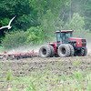 James Neiss/staff photographerWheatfield, NY - Seagulls wait for this farmer plowing his field at the corner of Ward and Niagara Roads to turn up a morsel for them to eat.