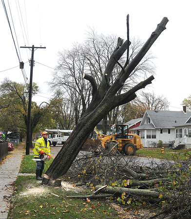 James Neiss/staff photographerNiagara Gazette, NY - Forestry Department worker Dave Rendina finishes cutting down a tree in the 8700 block of Munson Avenue, after rain and wind caused it to tip overnight.
