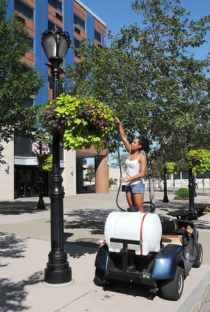 James Neiss/staff photographerNiagara Falls, NY - Mellody Marcantonio was spotted keeping the hanging baskets on Old Falls Street looking sharp by keeping them watered.