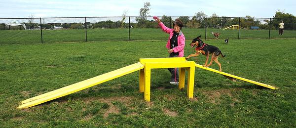 James Neiss/staff photographerLewiston, NY - Yoko Seiler of Niagara Falls gives her dog Dutches some exercise at the Lewiston Dog Park.