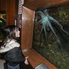 130304 Aquarium Visit 2