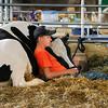 130801 County Fair 1