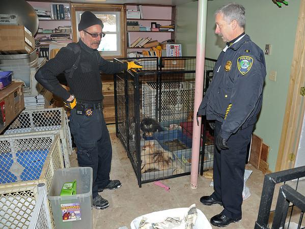130204 SPCA Raid 12