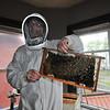 130513 Honey Bee 3
