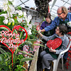 130115 Valentine Flowers