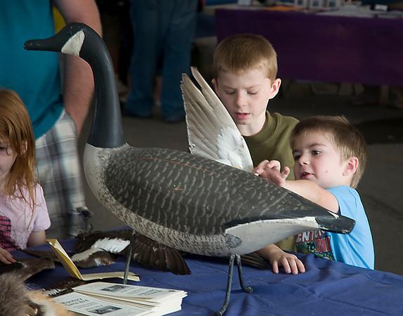 130928 Wildlife Fest
