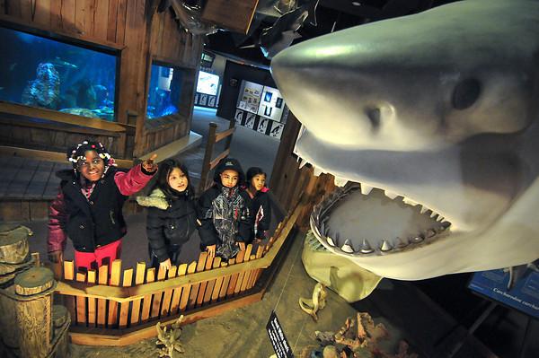 130304 Aquarium Visit
