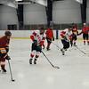 130320 NFFD Hockey 1