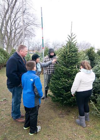 141206 Tree Sale 2