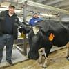 140423 cow bingo