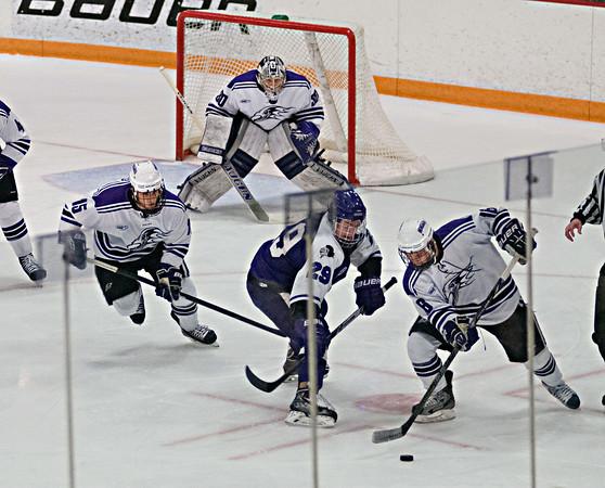 140118 NU Hockey 1