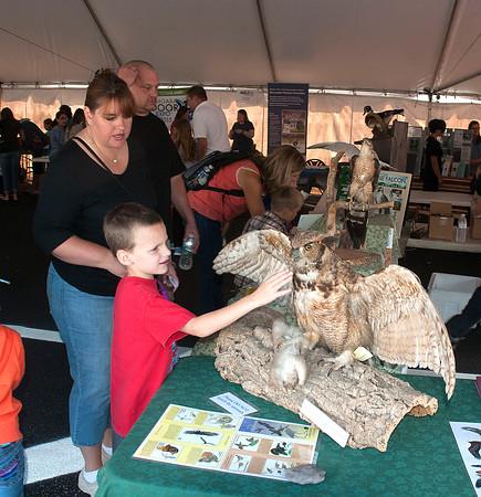 140927 Wildlife Fest 3