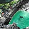 140814 aquarium