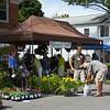 140621 Lewiston GardenFest 1