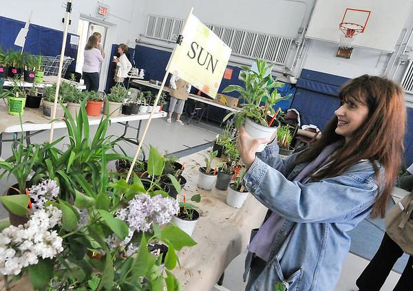 140517 plant sale 2