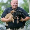 140613 Officer Bower