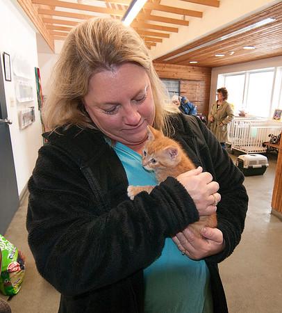 141122 Animal Shelter 2