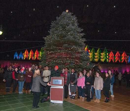 151201 Seneca Tree