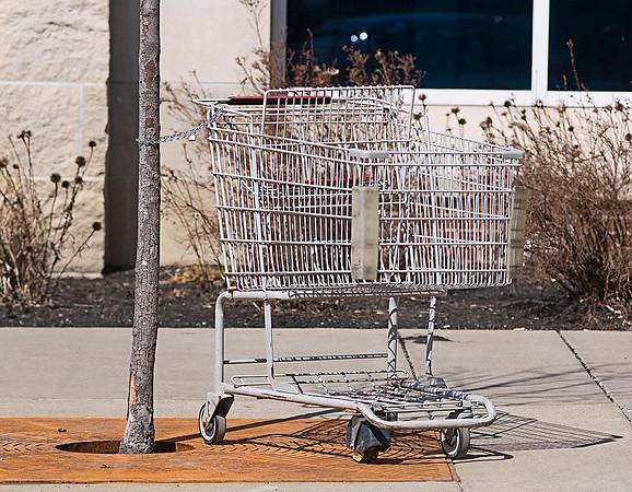 150319 Shopping Cart