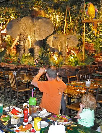 150602 rain forest cafe 2