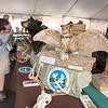 150926 Wildlife Festival 5