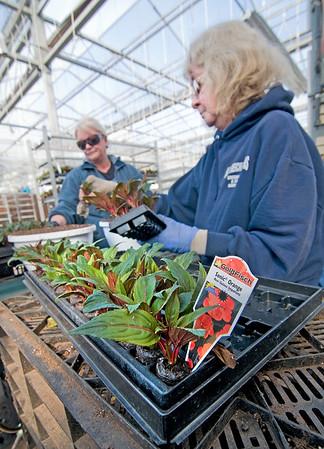 150318 Spring Planting 2