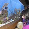 150404 Aquarium Egg hunt