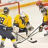 150208 NFHS hockey 2