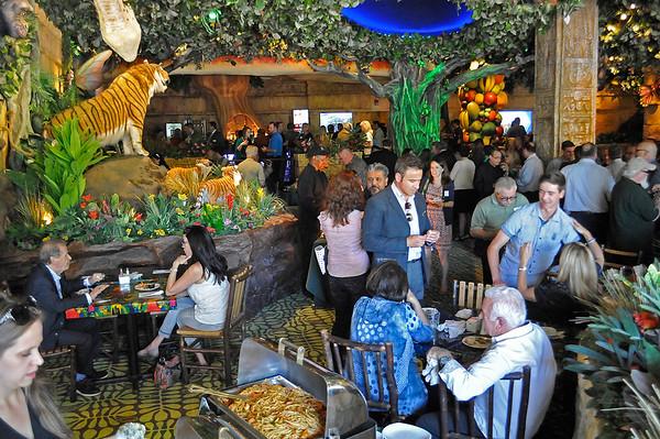 150603 rain forest cafe