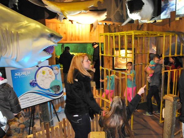 150404 Aquarium Egg hunt 3
